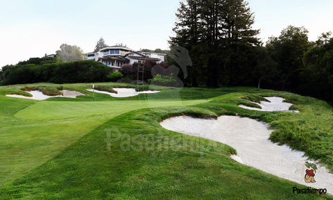 Professional Photograph of Hole #11