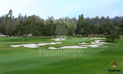 Professional Photograph of Hole #13