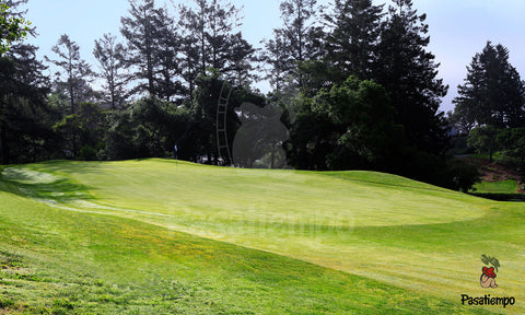 Professional Photograph of Hole #17