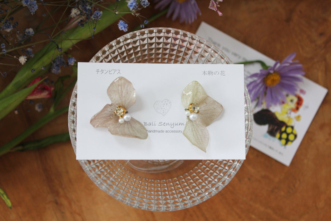Light Green Hydrangea Wing  No.42