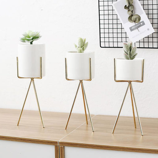 White Ceramic Planter with Metal Stand