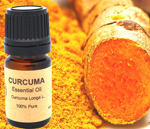 Turmeric Curcuma Essential Oil