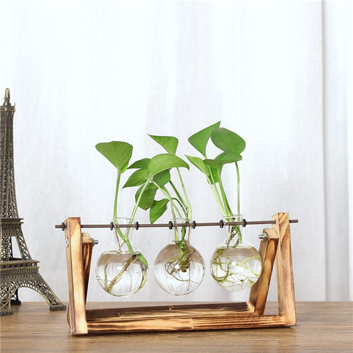Glass Bulb Vase with Wooden Stand