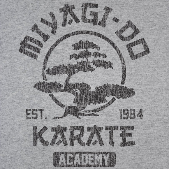 karate,kid,miyagi,do,academy,tee,shirt,t-shirt,tshirt,womens,slim,fit,donkey,tees