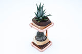 Geometric Double Cactus & Succulent Planter with Stand