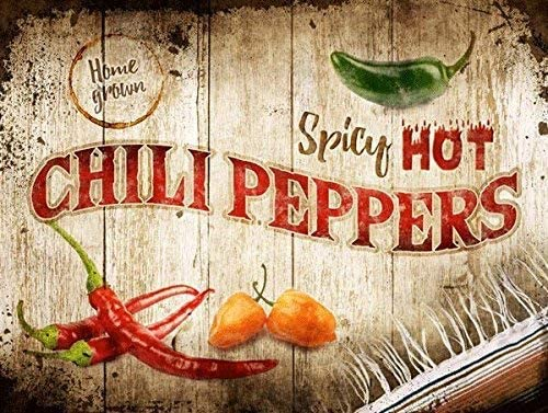spicy chili peppers - tin sign 8x10""