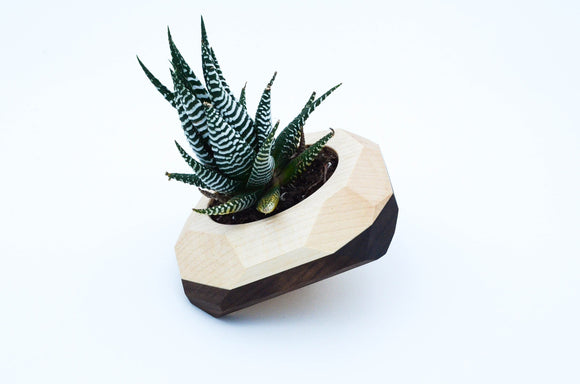 geometric,tilted,cactus,succulent,planter,wood,handmade,iron,roots,design