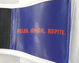 Showroom Sample Dominican Republic Pride Valle 2000 Boxing Gloves