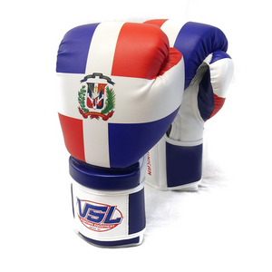 Dominican Republic Pride Valle 2000 YOUTH Boxing Gloves