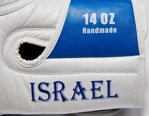 ISRAEL Pride Valle 4000 LEATHER Pro Boxing Gloves