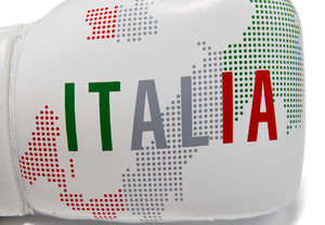 ITALY Valle 4000  LEATHER Pro Boxing Gloves