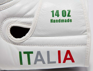 ITALY Pride Valle 4000  LEATHER Pro Boxing Gloves