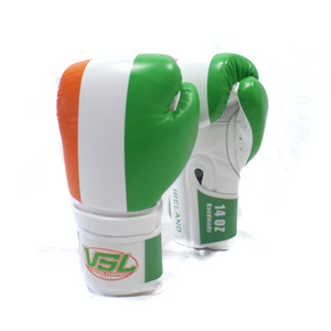 SHOWROOM Ireland Pride Valle 4000 LEATHER Pro Boxing Gloves