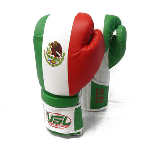 SHOWROOM Sample MEXICO Pride Valle 3000 Boxing Gloves