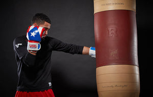 SHOWROOM SAMPLE Puerto Rico Valle 4000 LEATHER Pro Boxing Gloves