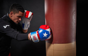 SHOWROOM SAMPLE Puerto Rico Pride Valle 4000 LEATHER Pro Boxing Gloves
