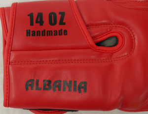 ALBANIA Pride Valle 3000 Boxing Gloves