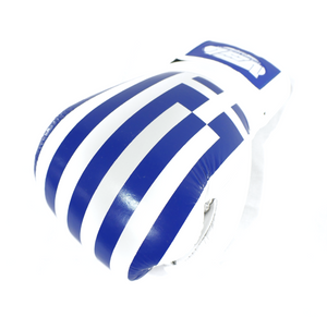 GREECE Pride Valle 4000 LEATHER Pro Boxing Gloves