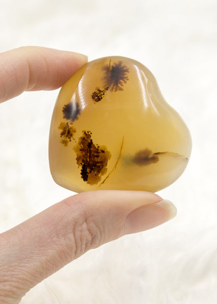 Dendritic Agate Heart 7DR