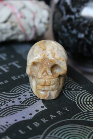 Small Crazy Lace Agate Skull - essentialchijewelry
