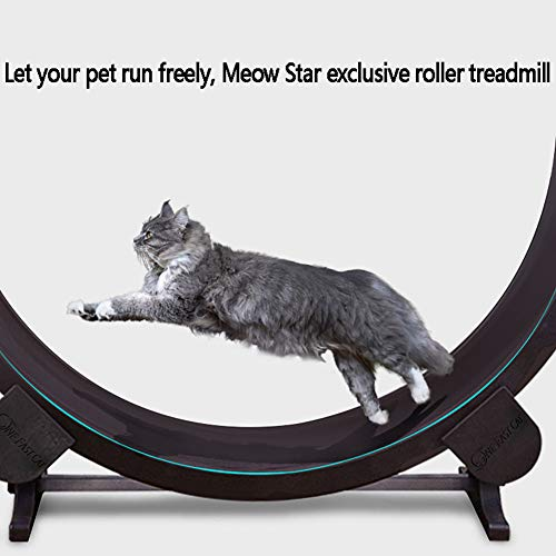 RSTJVB Cat Scratch Board Cat Exercise Wheel Treadmill Ferris Wheel Pet Furniture Grab Crawling Shelf Wheel Rotation Fitness Weight Loss Toys - Vercia Fashion Group