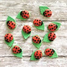Load image into Gallery viewer, Fondant Ladybug on leaf cupcake toppers