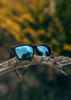Noord Wayfarer sunglasses - Outside