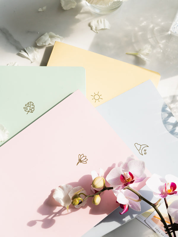 pink, green, blue, and yellow notebooks stacked unevenly on each other, next to white flower petals, with pink orchid flower on top