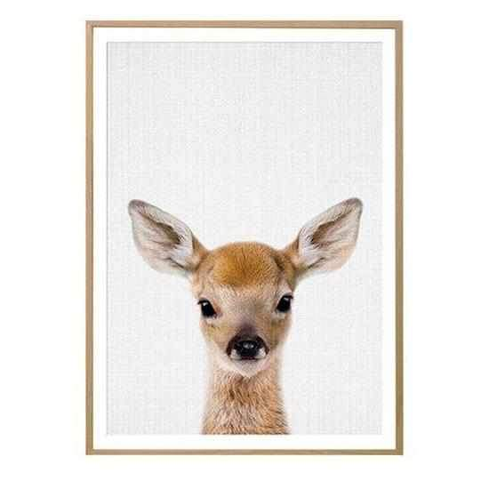 Baby Animals Woodland - Wallencia Home Decor