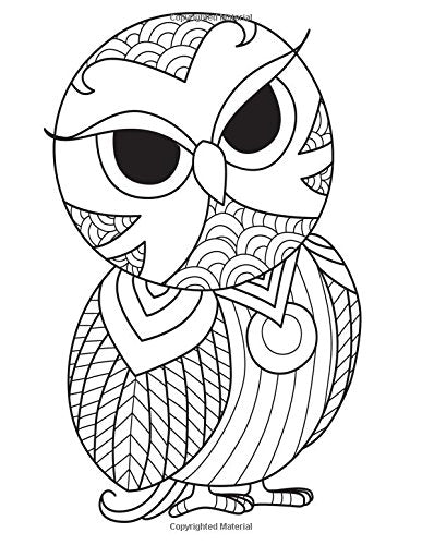 Blank Book Journal: Owl Zentangle Cover Diary Notebook: 8.5 x 11 size 120 gray lined pages! Color The Cover!