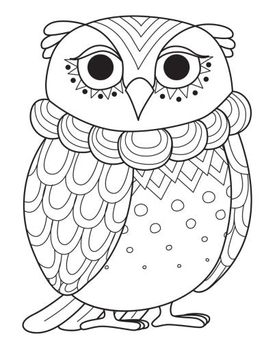 Owl Zentangle Daily Planner Journal: 365 + Days Bullet Journaling Blank  Notebook with sections for date, time, notes, lists & doodles! 8 5 x 11  size,