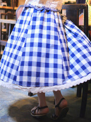 sweet blue plaid skirt