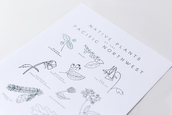 native plants of the pacific northwest print - www.mignonshop.com - 2