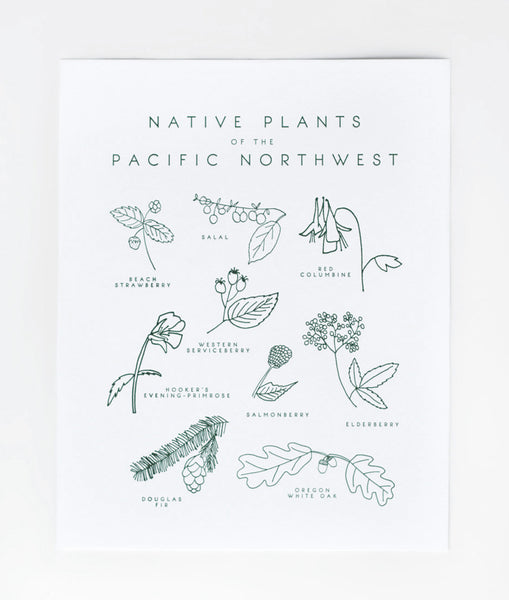 native plants of the pacific northwest print - www.mignonshop.com - 4