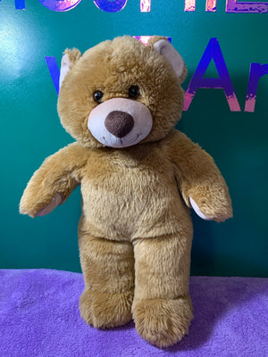 Delson, Tan Build-a-Bear Teddy Bear