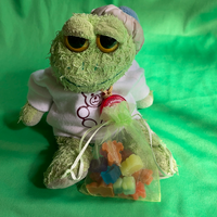 Froggie Custom Plushie Size Gummy Animals, Fake Food