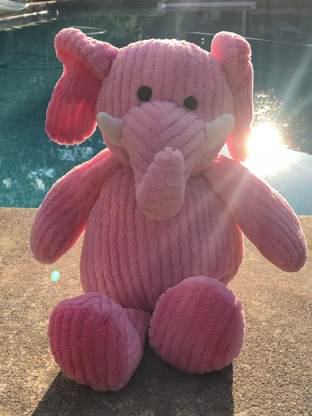 Bella, the Pink Elephant
