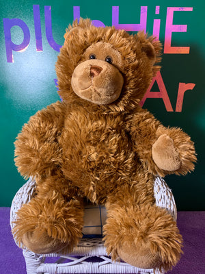 Baxie, Brown Build-a-Bear Teddy Bear