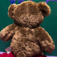 Thomas, Build a Bear Brown Teddy Bear