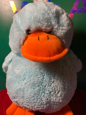 Laine, Blue Duck