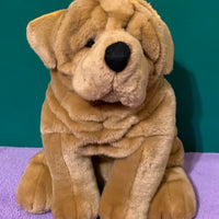Chantelle, Sharpei Puppy