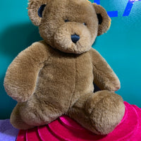 Bowen, Build-a-Bear Teddy Bear