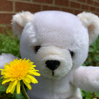 Butter, Vintage Teddy Bear