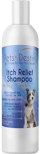 Itch Relief Shampoo