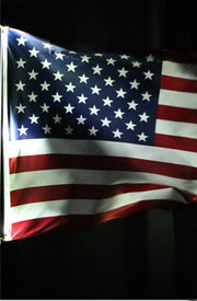 LED Liberty Flag Light