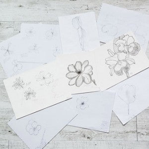 dog&boy, designer scarves, magnolia stellata, sketches, brain cancer