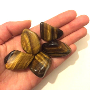Tigers eye tumbled stone 20mm Leo
