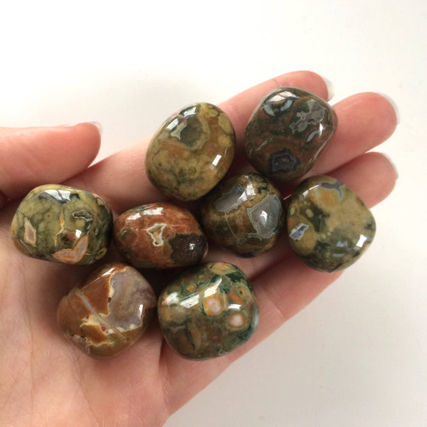Rainforest Rhyolite tumbled stone 15-20mm