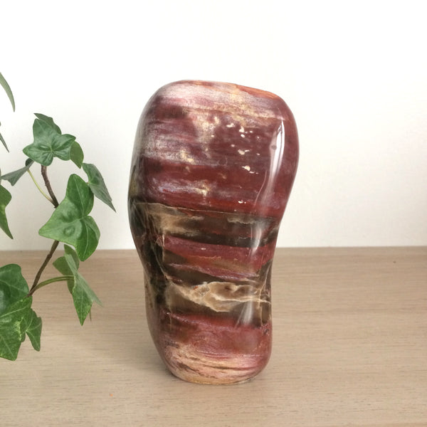 Petrified Wood polished free form bolder cut base free standing