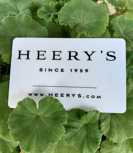 Heery's Clothes Closet Gift Card